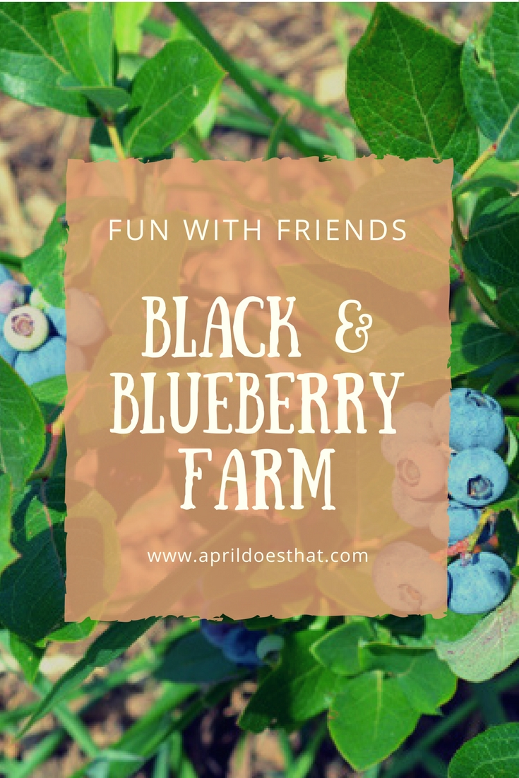Fun with Friends: Black and Blueberry Farm